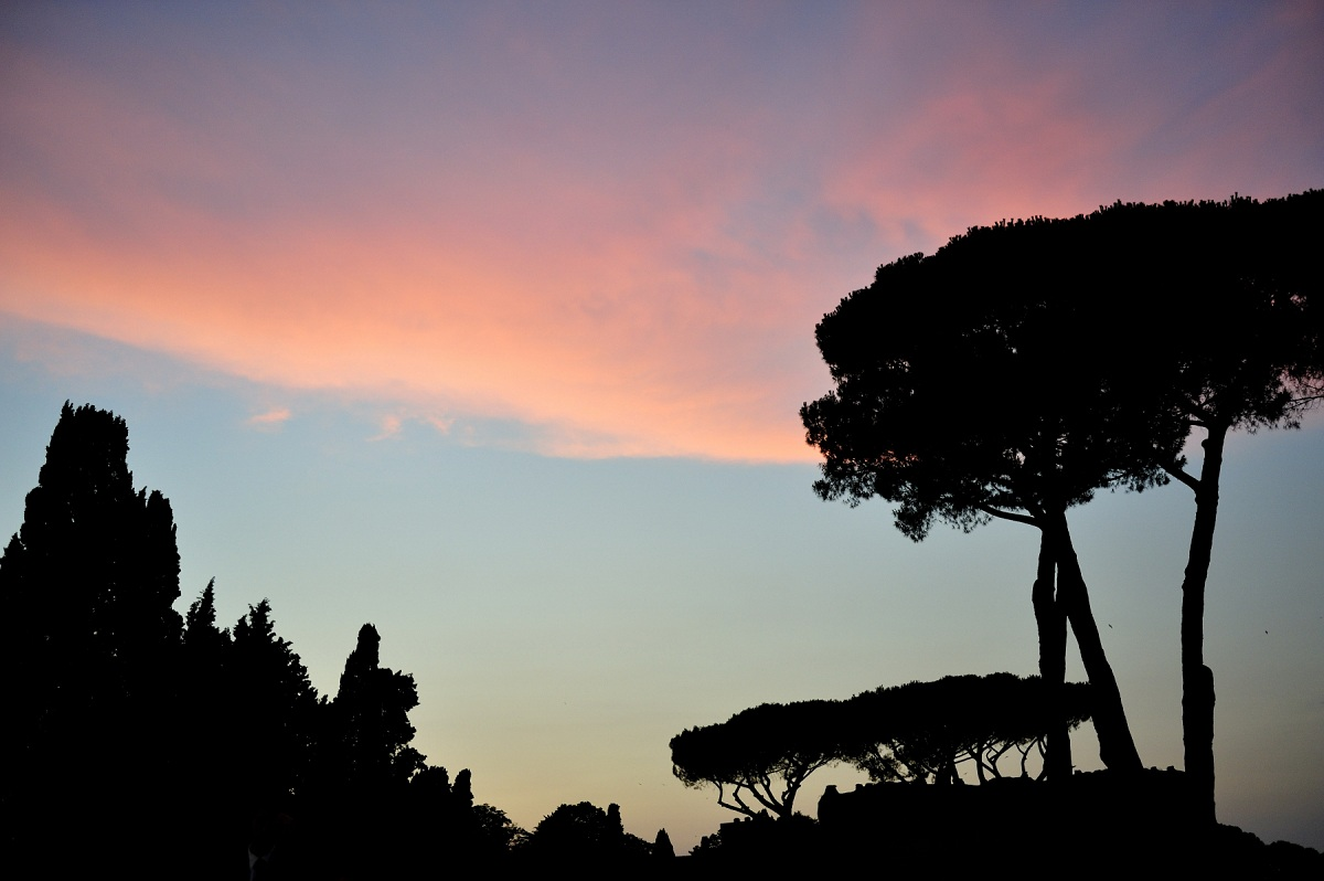 caracalla 2017 © André P. Meyer-Vitali via Flickr