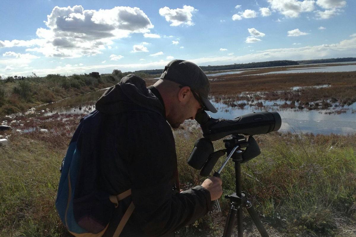oasi wwf taranto birdwatching