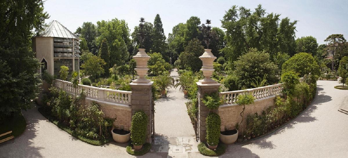 orto botanico antico padova
