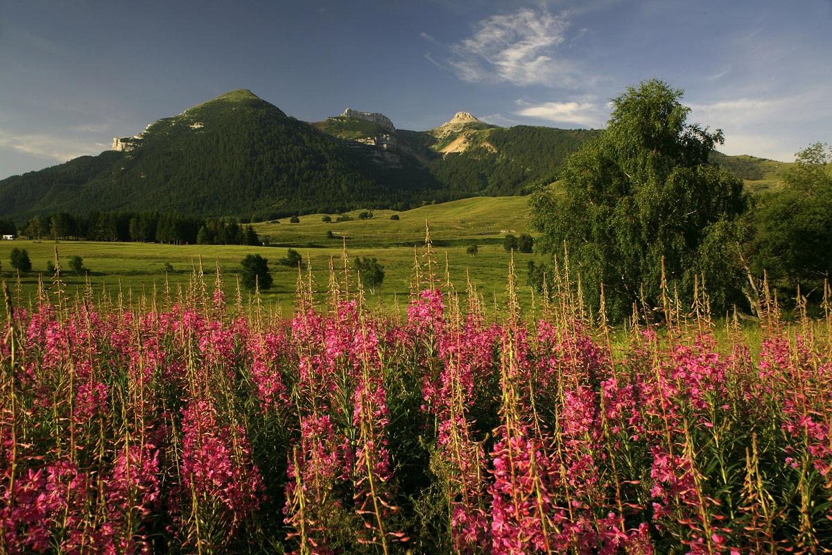 escursioni estive in montagna vicino trento monte bondone