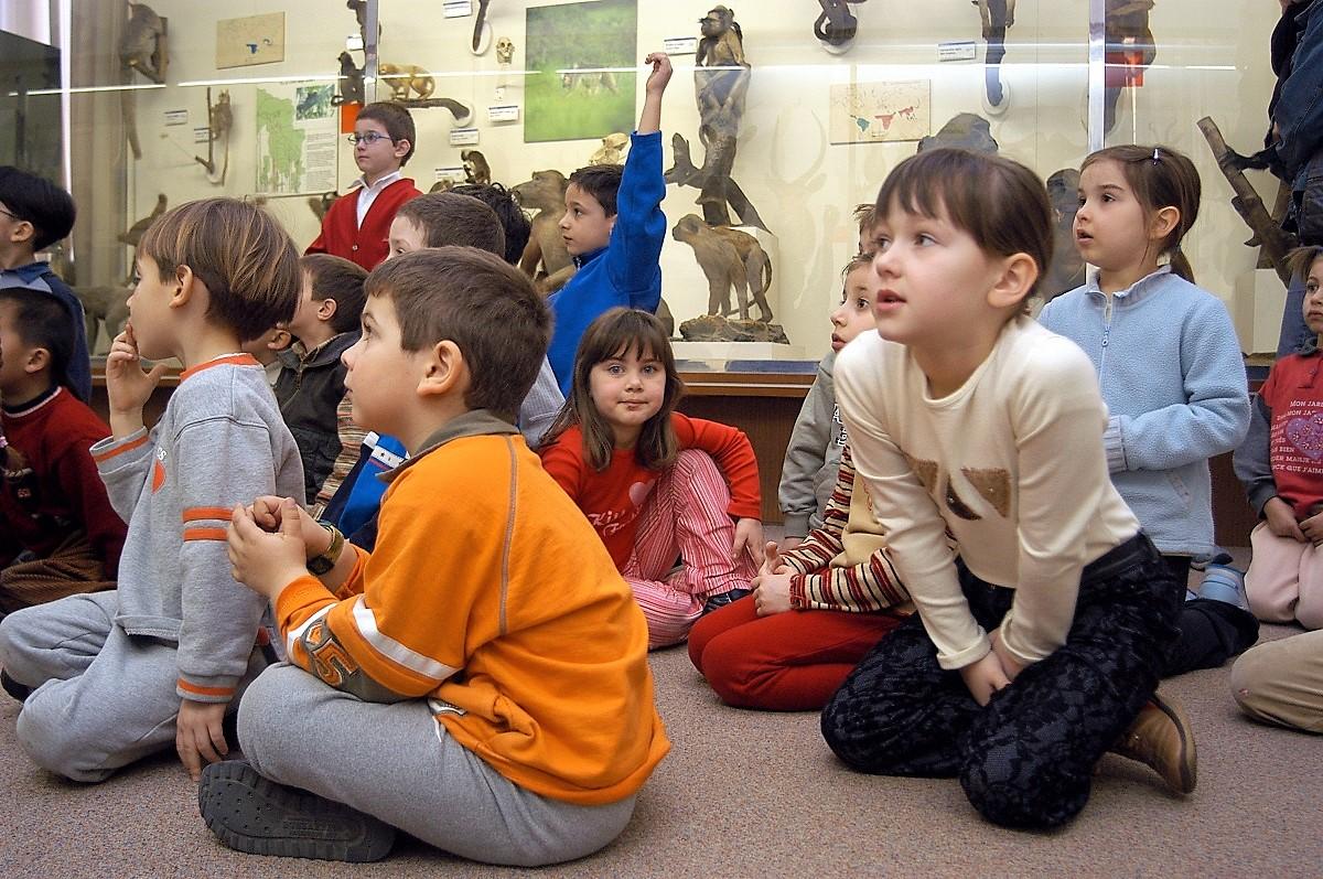 verona con i bambini notte al museo