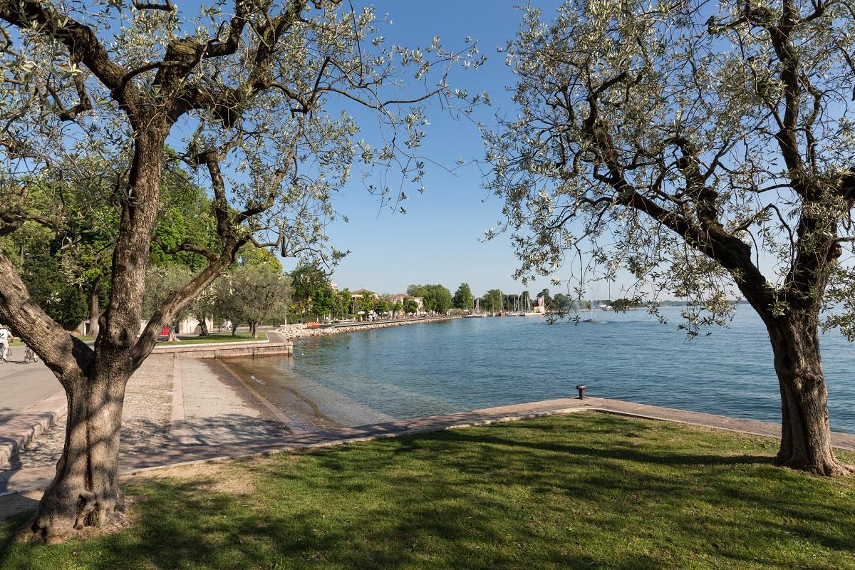 Da Peschiera fino a Bardolino idee green weekend - Bardolino