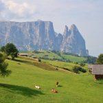 Estate in montagna Scopri Bolzano tra escursioni e aperitivi - Alpe di Siusi Seiser Alm