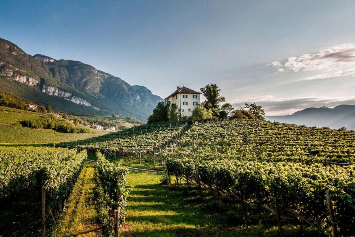 Estate in montagna Scopri Bolzano tra escursioni e aperitivi CREDITS strada del vino suedtiroler-weinstrasse