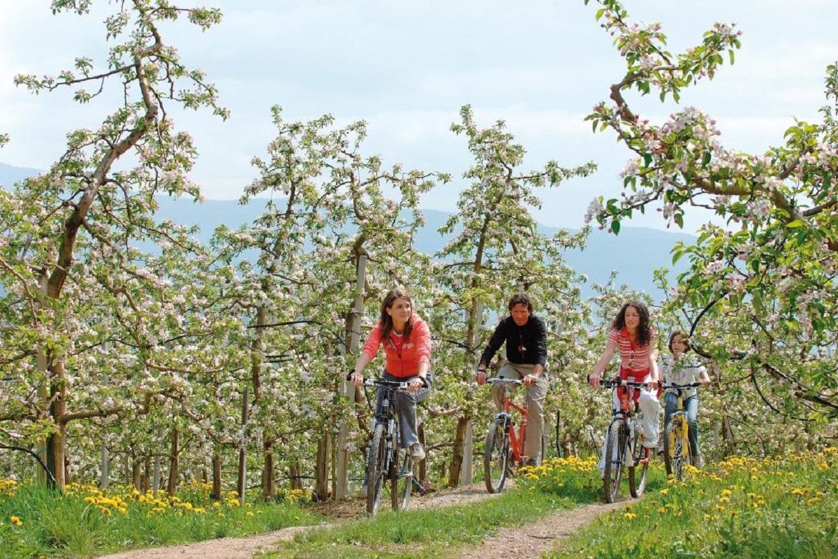 Itinerari in bici per visitare Trento e dintorni - val di non it