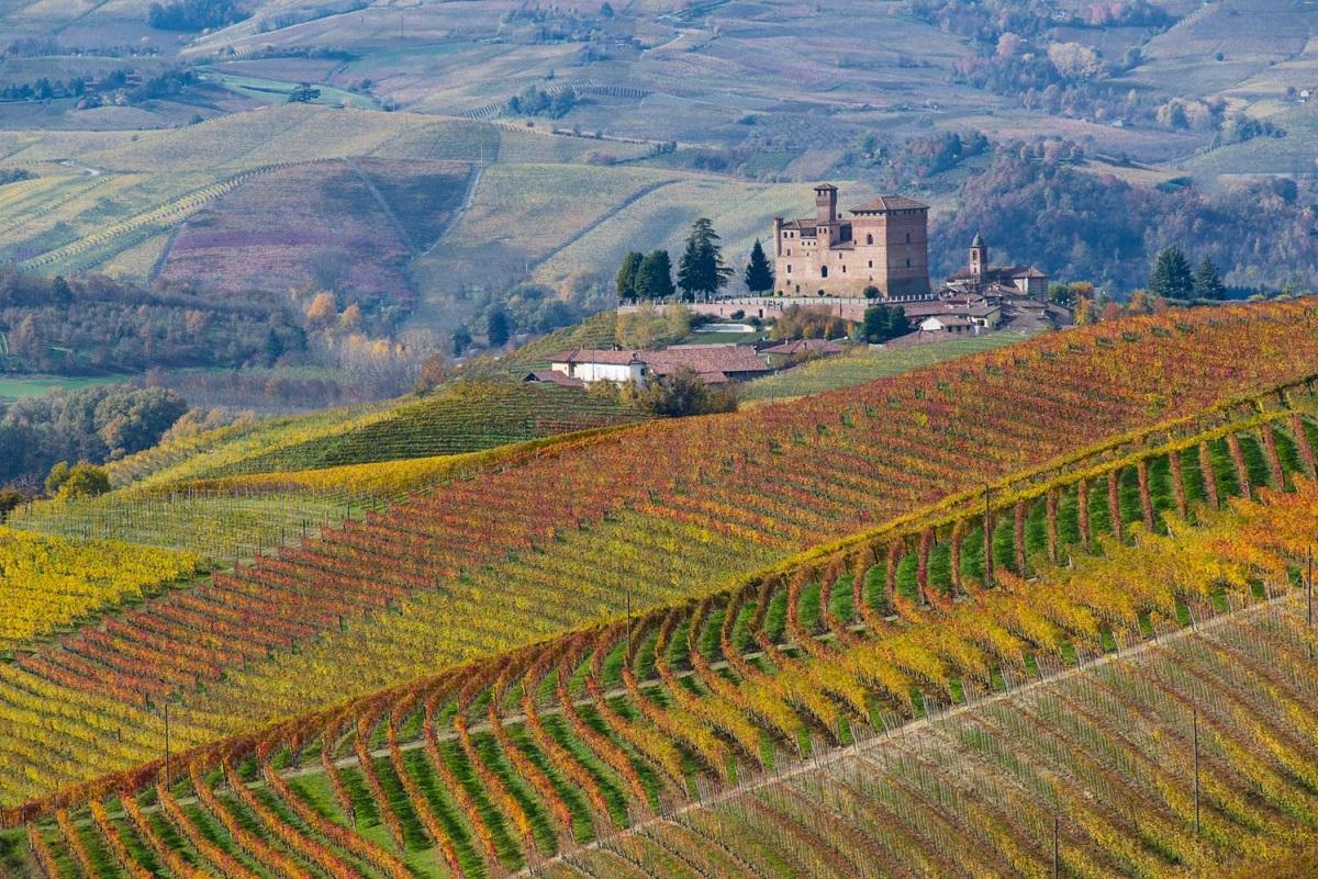 Langhe, Roero e Monferrato un itinerario UNESCO - Castello Grinzane Maurizio Milanesio 2