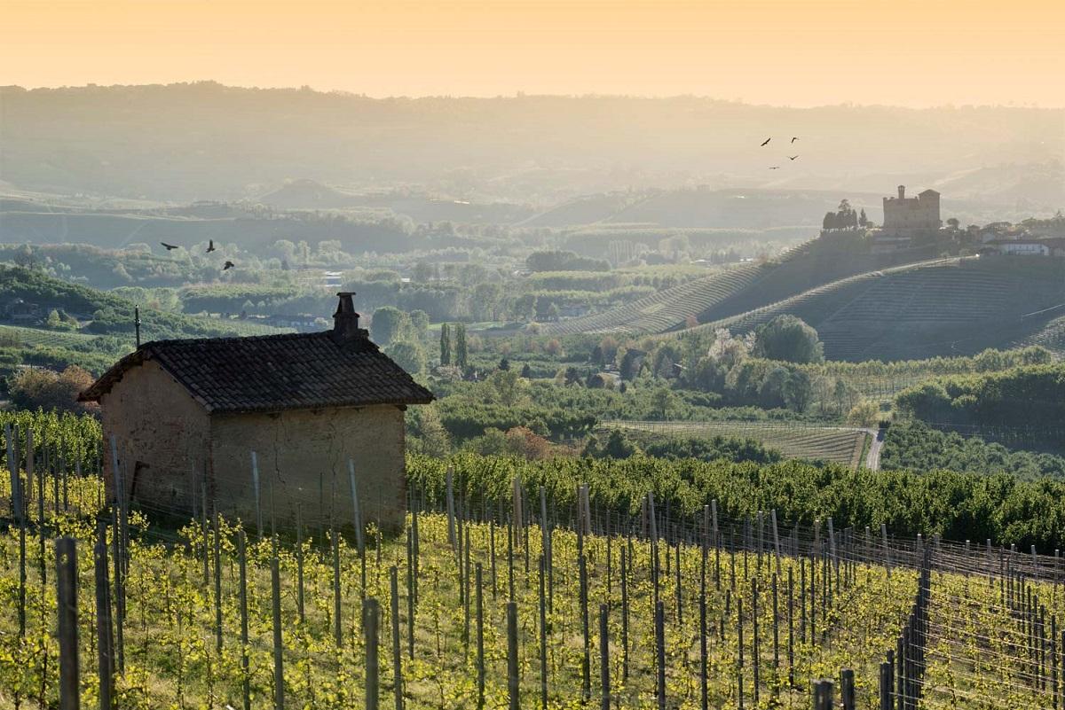 Langhe, Roero e Monferrato un itinerario UNESCO - Castello Grinzane Maurizio Milanesio 3