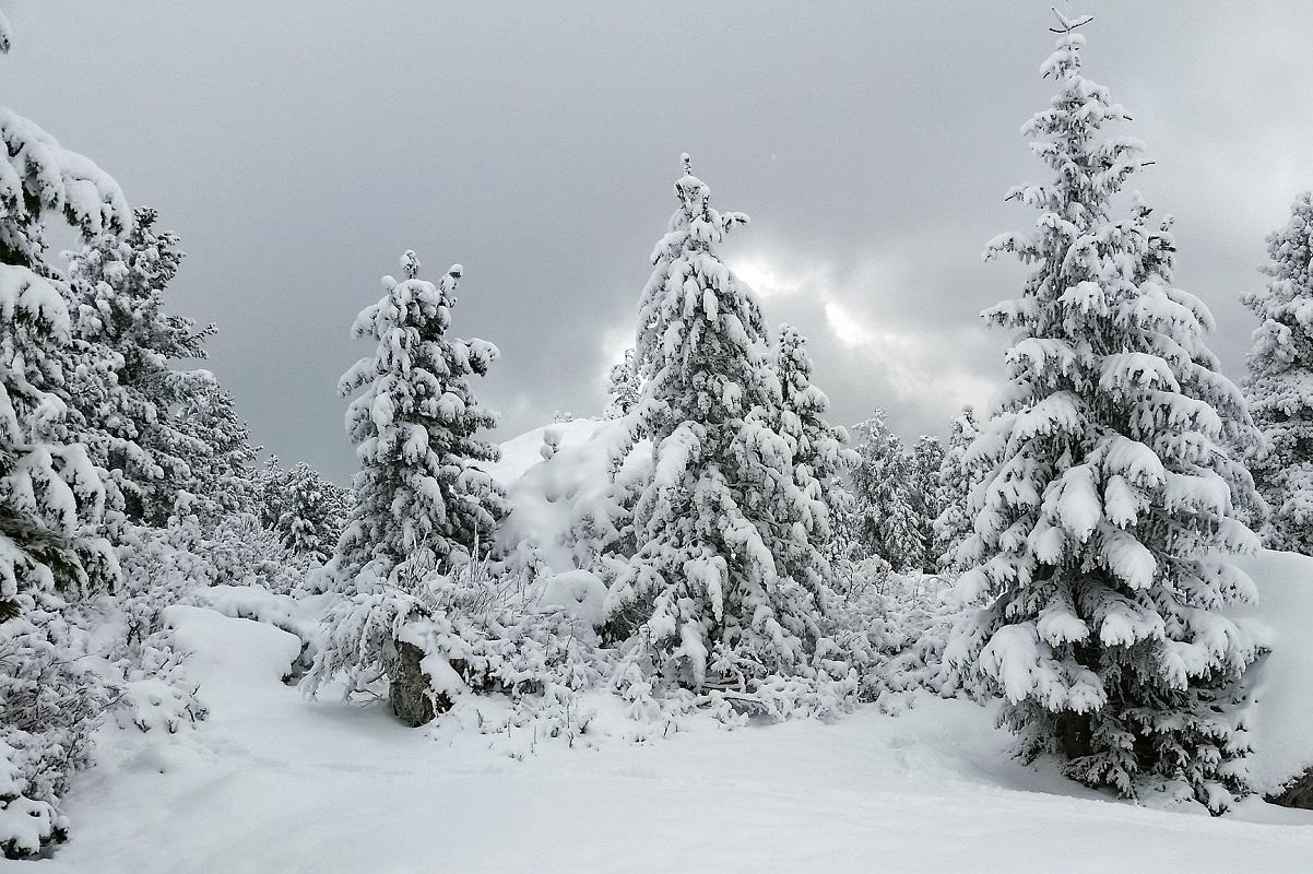 Trekking invernale a Bolzano credits Christian via Flickr