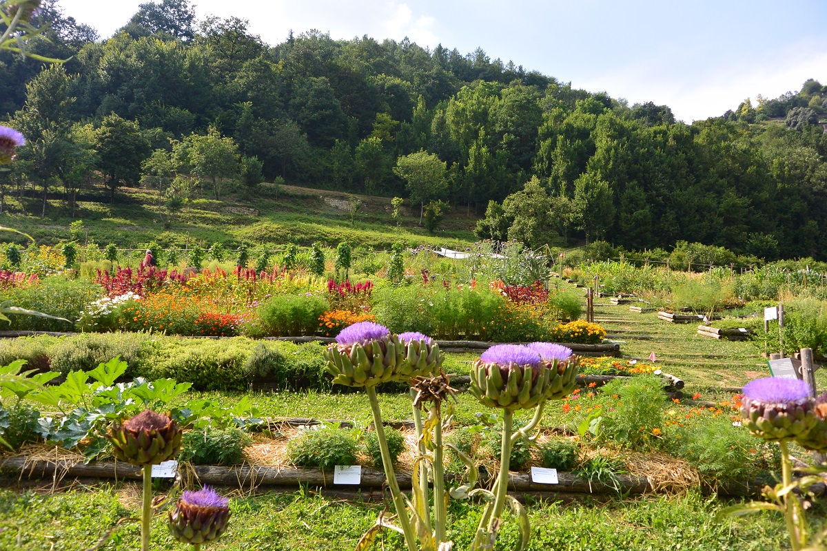 Visitare Bergamo 3 luoghi basso alto - Orto botanico