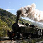 treno delle pigne 2