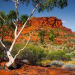 The Ghan paesaggi australiani 2