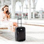 Italo bagagli e valige tutte le regole